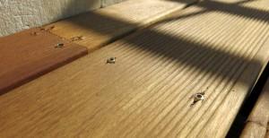 Gleiche Aufgabe, anderes Terrassenholz: So machen andere das. Wir wissen nicht was alles vergessen wurde, schön ist anders.